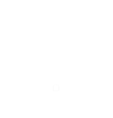 Antiquitäten im Nikolaiviertel Berlin